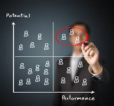 Performance&Potential
